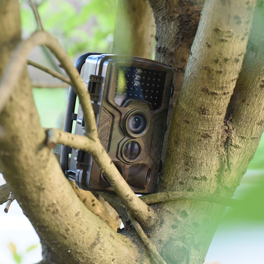 1080P HD Game & Trail Hunting Camera No Glow Infrared Scouting Camera Night Vision up to 75ft with 36pcs 940nm IR LEDs