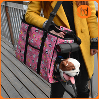 Fashion Cute pet dog cat bag and backpack pet carrier