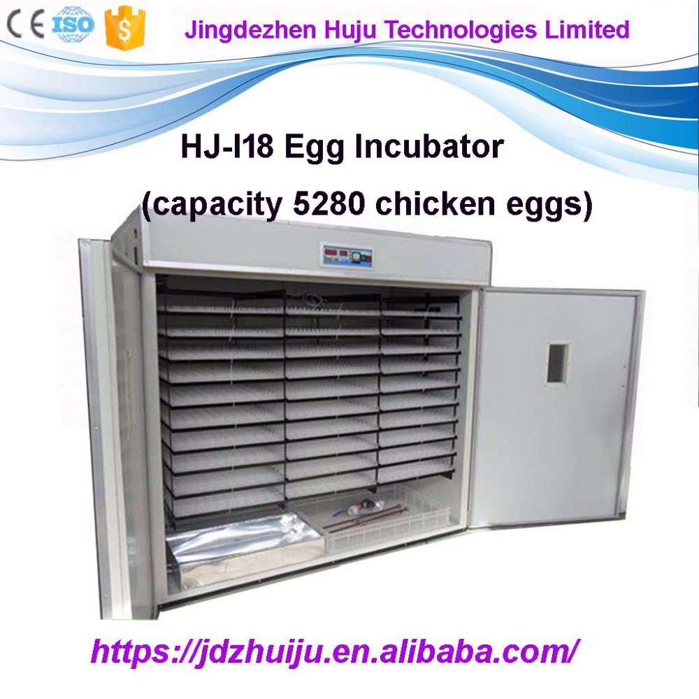 5280 chicken egg incubator HJ-I18