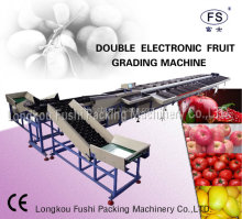 mango fruit grading machine