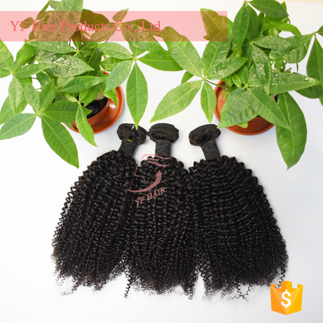 European Kinky Curly Hair Weave cheap Virgin peruvian Hair, Kinky Curl, European Hair