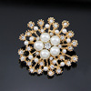 Cuntom Made Hot Selling Brooch Pin
