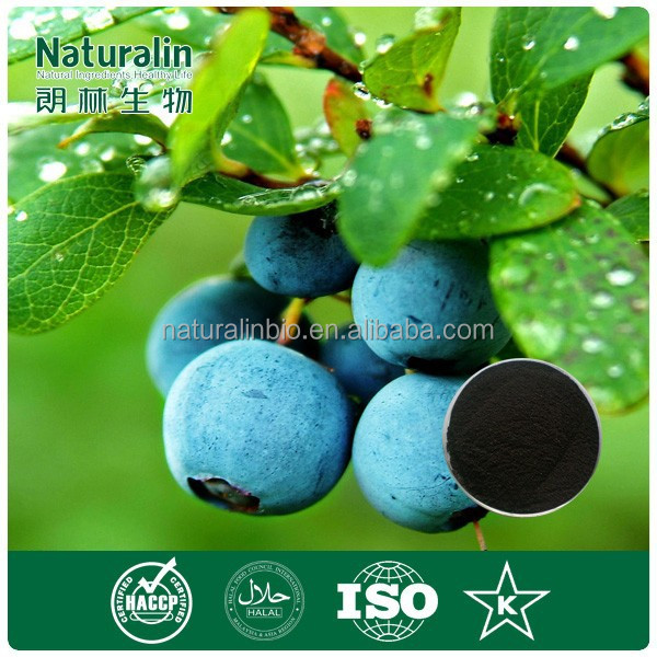 100% Pure Freeze Dried Blueberry/ Blueberry Juice Concentrate Powder