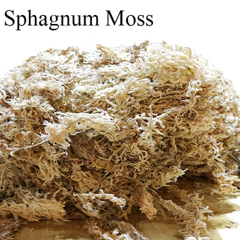 Wholesale Top Quality Organic Fertilizer Spagmoss Dried Sphagnum Moss