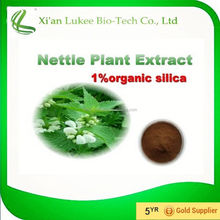 Anti-inflammatory Powder form Urtica dioica L./Nettle leaf extract