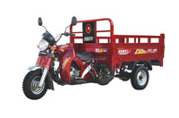 3 wheel motorcycle 200cc trike 3 wheeler