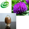 Factory Supply 40%Isoflavones Red Clover Extract Trifolium pratente L.