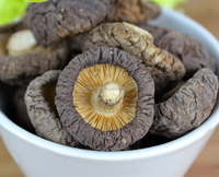 Natural and healthy dried shiitake mushroom for sale