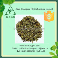 Top quality yerba mate extract