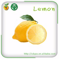 2015 organic sour fruit yellow fresh lime and lemons for exporting