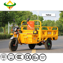Hot Selling Electric Tricycle for Cargo for Sale