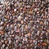 2016 Newdecorative river stone for garden decoration, dark grey natural river stone