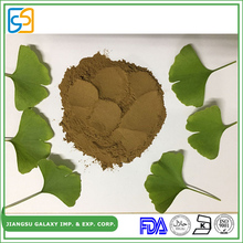 OEM ODM service China supplier plant extract of ginkgo biloba leaf