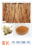 factory supply Chinese angelica Extract/ DongQuai Extract