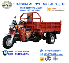 250cc High quality Motorized Water Cooling Tricycle for Cargo with Guard Bar
