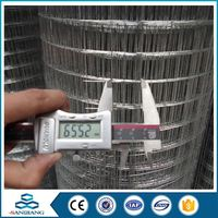 galvanized square 1/4 inch galvanized welded wire mesh in iron wire mesh