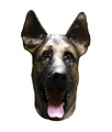 Novelty Items Dog Mask Hot-selling Funny Costume Genuine Latex Overhead Party Mask