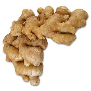 supply fresh ginger for buyers
