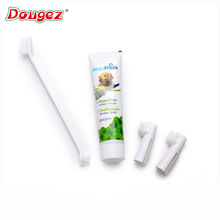 Hot selling Pet Cleaning suit,pet toothpaste and toothbrush suit,pet toothpaste