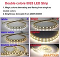 led strip 110v/220v 5025 CCT shifted led strip light