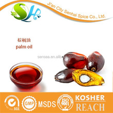 Hot selling natural food grade plant refined palm oil in company