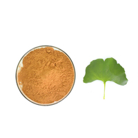 Health supplement ginkgo leaf extract 24/6 boldo leaf extract