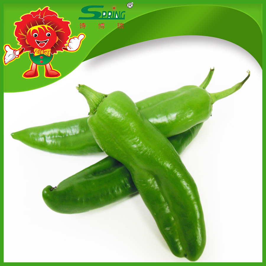 Lowest price green chilli for sale
