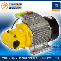 1HP 70LPM Electric Engine Oil Transfer Pump