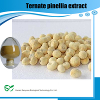Hot selling plant extract china manufacturer 100% natural ternate pinellia extract
