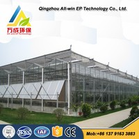 Advanced Hydroponics Greenhouse For Agriculture