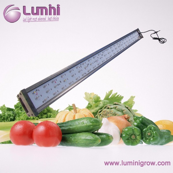 DIY high power magnetic induction led grow light 600mm for blooming