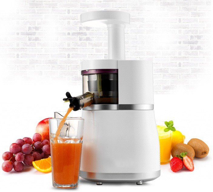 Slow Juicer without loss of extract