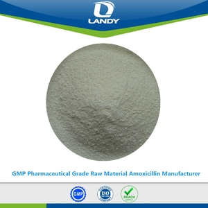 GMP Pharmaceutical Grade Raw Material Amoxicillin Manufacturer