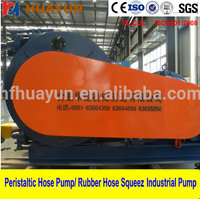 Top Selling Chlorine Dosing Pump Preferred Metering Chemical Pumps High quality Peristaltic Hose Pump for Industrials