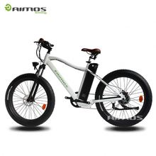 Foldable Electric Bike made in china 2012 new model with CE and EN15194 ,250w 8FUN motor with Lifepo4 battery LCD displayer