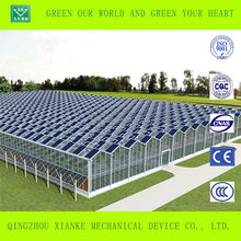 Solar Hydroponic Greenhouses for sale