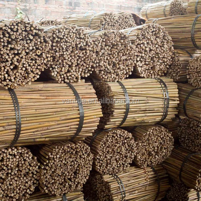 Factory Direct Green Dry Straight Agricultural Bamboo Products