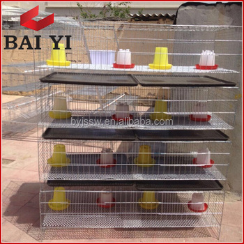 Trade Assurance Day Old Chicken Cage With Drinker and Feeder