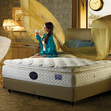 Luxurious European Style Electric Adjustable Box Spring Bed