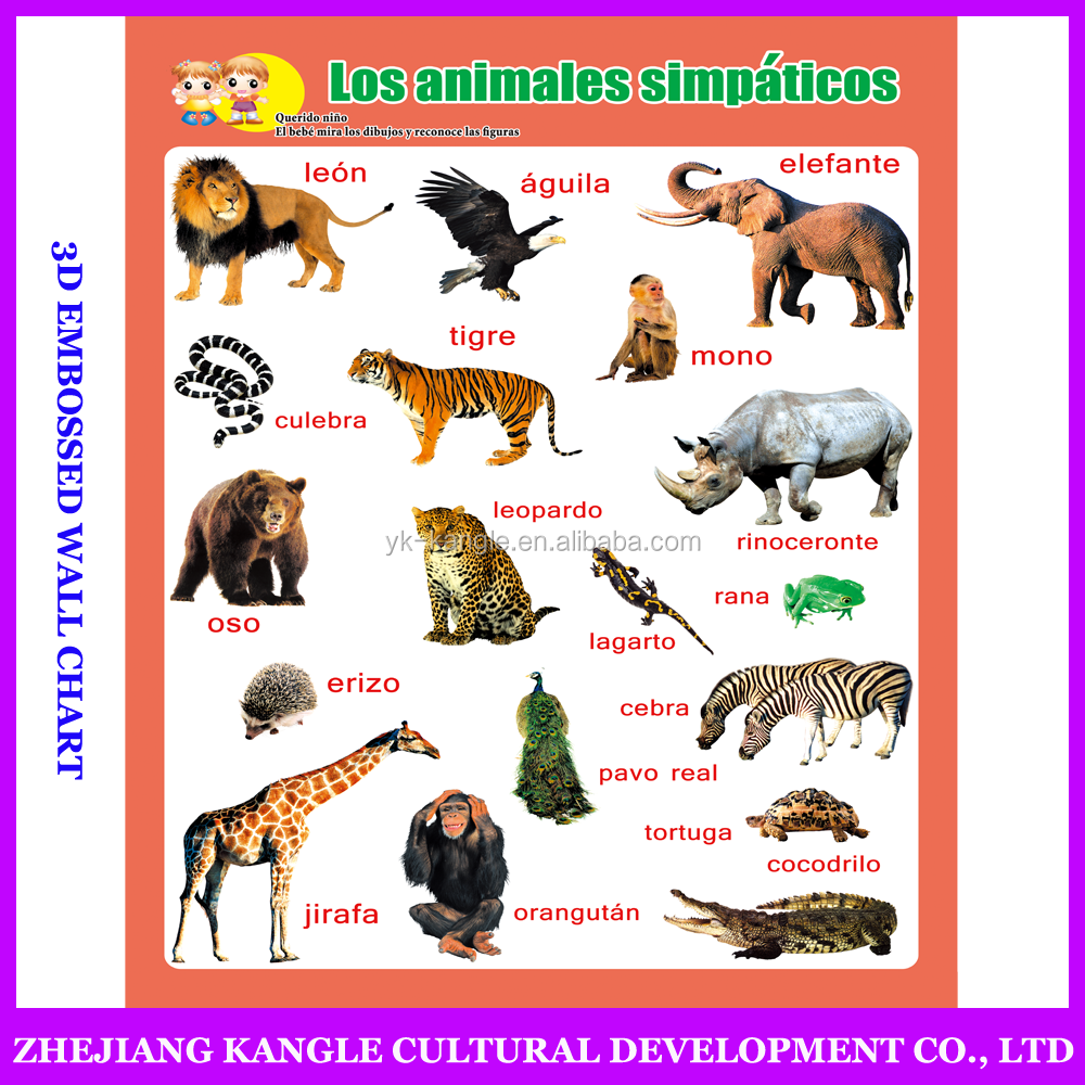 Spanish language wholesale wall chart with environmentally painting quality with lovely animal learning chart