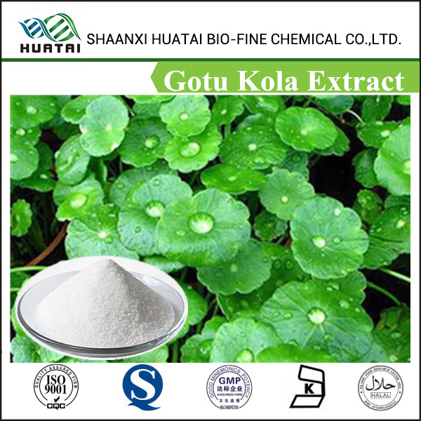 Factory supply Triterpenoid Saponis 10%~80% Hplc/High Quality Gotu Kola Extract