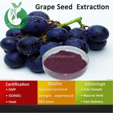 Factory supply Top qualtiy Grapefruit Seed Extract powder/opc/Grapefruit Seed Extract