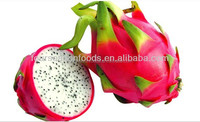 IQF/Frozen dragon fruits ,wholesale fresh dragon fruits 2015 new crop