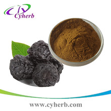 Free sample Prunus mumeSieb.et Zucc. P.E /Dark Plum Fruit Extract/Fuctus Mume powder Extract 4:1 5:1 10:1 20:1