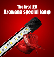 Best price led aquarium submersible light arowana led light