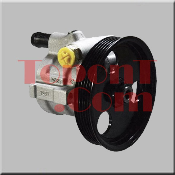 Power Steering Pump For Renault Megane Kangoo Clio Scenic Dacia Logan 8200888505 7700431286 8200112299 8200113599 7700875707
