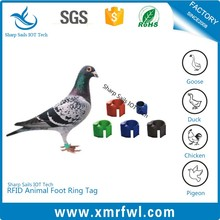 Factory direct sale low frequency RFID racing pigeon rings for sale