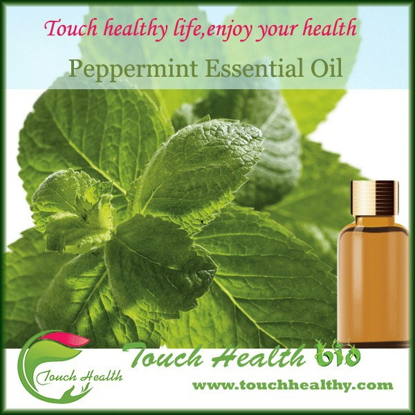 2017 Reduces inflammations and itching on skin mint oil