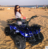 /product-detail/cheap-price-hot-sale-all-terrain-vehicle-4-wheel-atv-60504543496.html