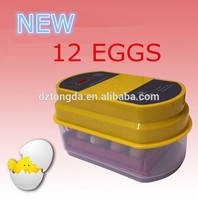 Family type 12 eggs automatic egg incubator used poultry egg incubator WQ-12